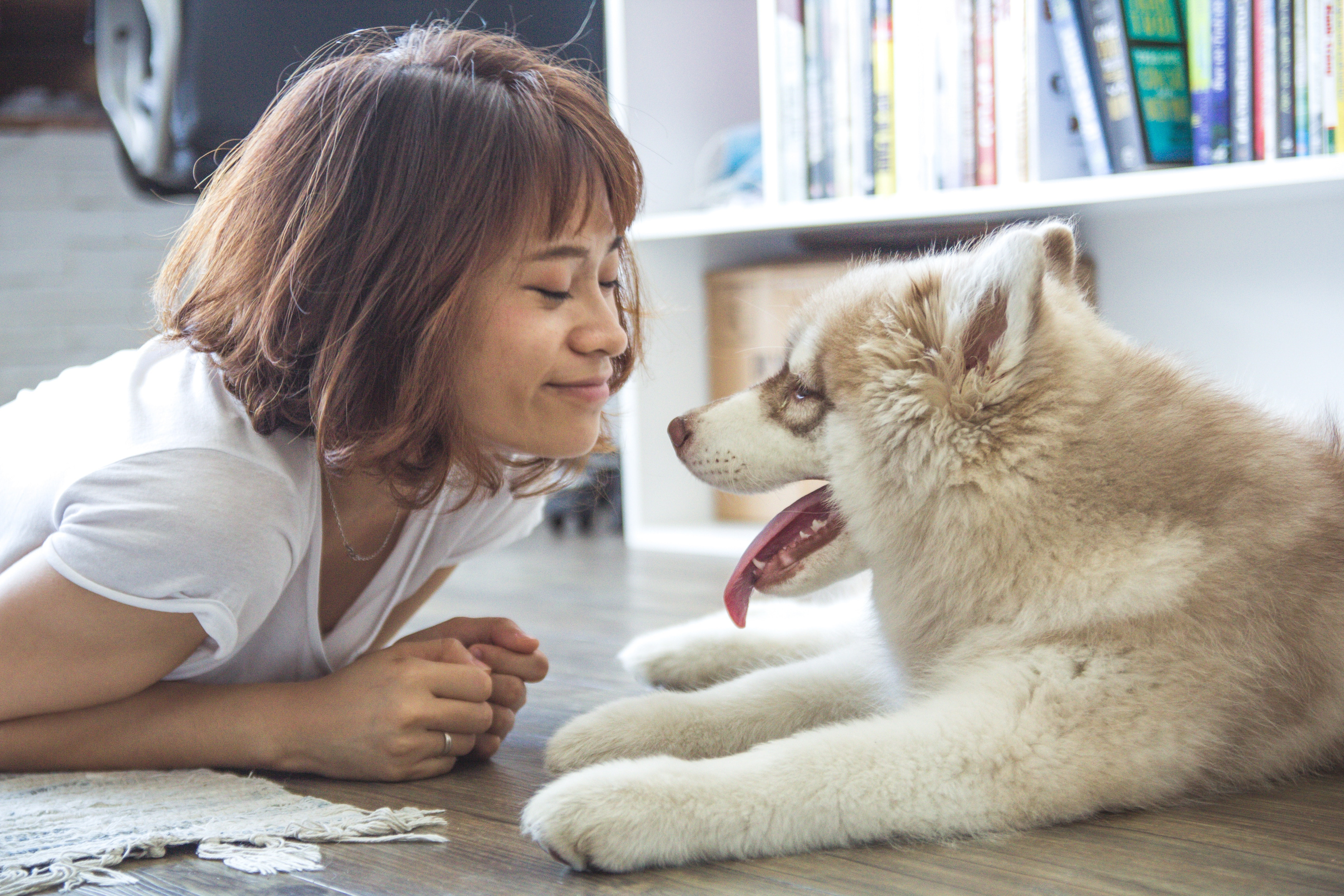 5-Perks-Your-Tenants-Will-Pay-More-For-Pets.jpg#asset:942